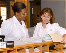 Photo of Doctor Anne L. Martello looking at a file
