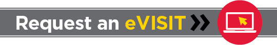 Request an eVISIT button